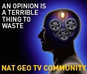 Nat Geo TV Community Image